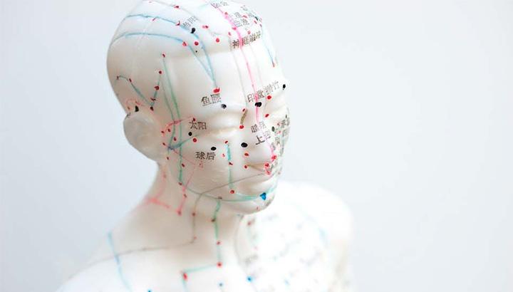 los meridianos de acupuntura